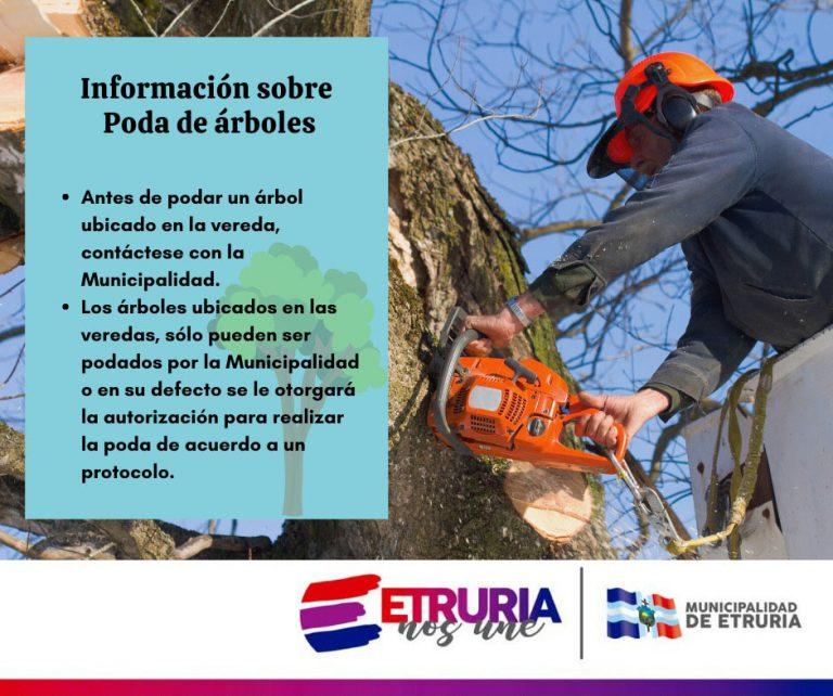 Información sobre poda de árboles